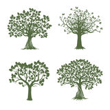 Collection of Green Trees. Vector Illustration. Stock Image