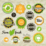 Collection green vector labels, badges and icons. Bio eco natural certified fresh theme, vintage retro grunge set Royalty Free Stock Images
