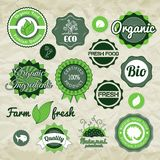 Collection green vector labels, badges and icons. Bio eco natural certified fresh theme, vintage retro grunge set stock illustration