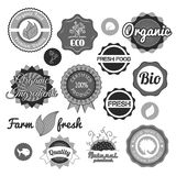 Collection green vector labels, badges and icons. Bio eco natural certified fresh theme, vintage retro grunge set royalty free illustration