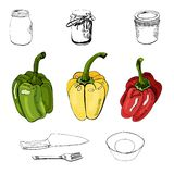 Collection of green, yellow and red hand drawn sweet peppers and different monochrome objects. Ink and colored sketch. Collection of green, yellow and red hand stock illustration