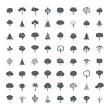 Collection of Grey Trees. Royalty Free Stock Photos
