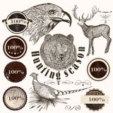 Collection of  hand drawn animals and labels Stock Images