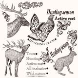Collection of hand drawn animals in vintage style for hunting de Royalty Free Stock Photos