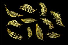 Collection of hand drawn feather. Set of decorative animals birds feathers. Hand drawn vector art. Brush pen gold ink illustration Stock Photo