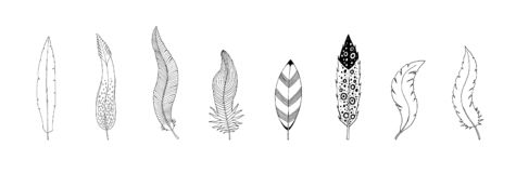 Collection of hand drawn feathers. Ink illustration isolated on white background vector illustration