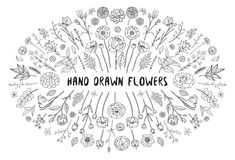 Collection of hand drawn floral elements Stock Photos