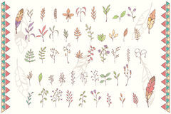 Collection of hand drawn flowers with feathers Royalty Free Stock Photos