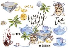 Collection of hand drawn illustration on the theme tea. Watercolor set. Menu design. Collection of hand drawn illustration on the theme tea. Watercolor set Stock Image
