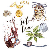 Collection of hand drawn illustration on the theme tea. Watercolor set. Menu design. Royalty Free Stock Images
