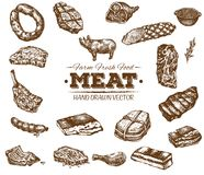 Collection of hand drawn meat sketch Vector Illustration