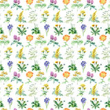 Collection of hand drawn medical herbs and plants. seamless pattern royalty free illustration