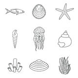 Collection of hand drawn sea creatures in modern mono line style on isolated white background. Vector starfish Royalty Free Stock Photo
