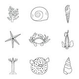 Collection of hand drawn sea creatures in modern mono line style on  white background.Vector crab, starfish Stock Image