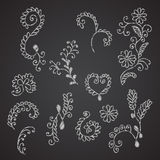 Collection of hand drown floral elements imitating chalk on blac Stock Photo