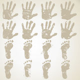 Collection hand and feet. Prints Stock Images