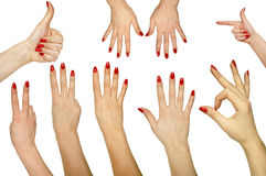 Collection of hand gestures Royalty Free Stock Photos