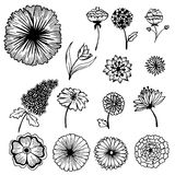 Collection of hand painted flowers background Stock Images