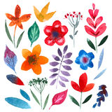 Collection of handpainted watercolor vector Royalty Free Stock Images