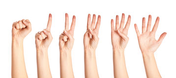 Collection of hands Royalty Free Stock Photography