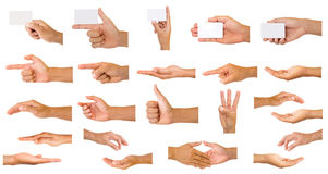 Collection of hands Royalty Free Stock Images