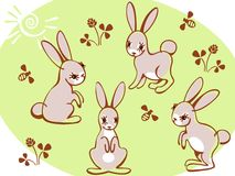 Collection hares on a green background. Stock Photo