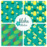 Collection with hawaiian seamless pattern Stock Photos
