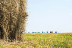 Collection of hay in bales Royalty Free Stock Images