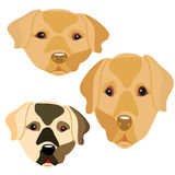 Collection of head of cute dogs, cartoon on white background. Vector Stock Photos