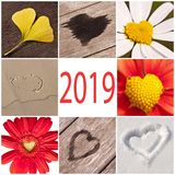 2019, collection of hearts related with nature, valentine day concept. 2019, collection of hearts related with nature, new year and valentine day concept royalty free stock images