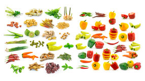 Collection of herb and spices Stock Photography