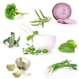 Collection of herbs. Over white stock photos