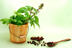 Collection of herbs with peppercorn. And star anise stock photo