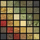 Collection of herbs and spices Stock Photography