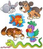 Collection heureuse 1 d'animaux familiers Image libre de droits