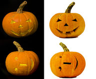 Collection of hi-res isolated halloween pumpkins. On black & white background stock photography