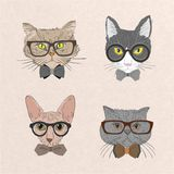 Collection of hipster cats Stock Images