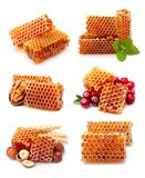 Collection of honeycomb royalty free stock photography