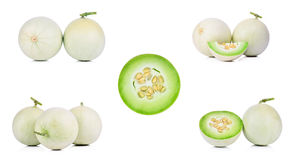 Collection Honeydew Melon on White Background.  Royalty Free Stock Image