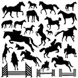 Collection of horse vector royalty free illustration