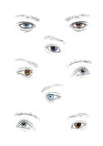 Collection of human eyes Royalty Free Stock Photo