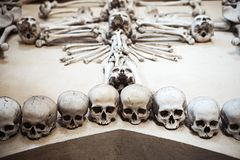 Collection of human skulls in a composition Royalty Free Stock Images