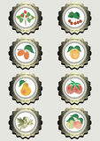 Collection of icons with fruits. For food production Stock Photos
