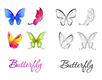 Collection of illustrated butterfly. coloring Stock Photography