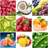 Collection of images of food Royalty Free Stock Photo