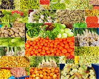 Collection of images from vegetable farmers Stock Image