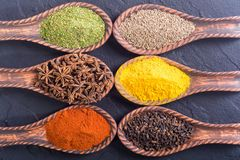 Colection of indian spices. Collection of indian spices in spoon background . Top view Royalty Free Stock Photos