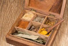 Collection of Indian spices in wooden box Royalty Free Stock Photo