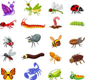 Collection of insects cartoon for you design Stock Photo