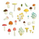 Vector set of colored mushrooms. vector illustration